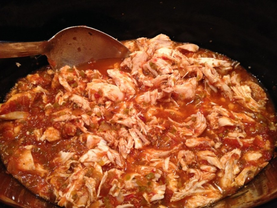 Simple Crock Pot Salsa Chicken